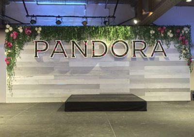 pandora_2_coverweb